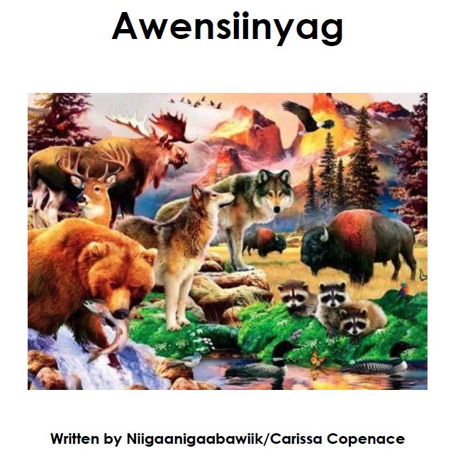 Awensiinyag Mazina'igan - Book