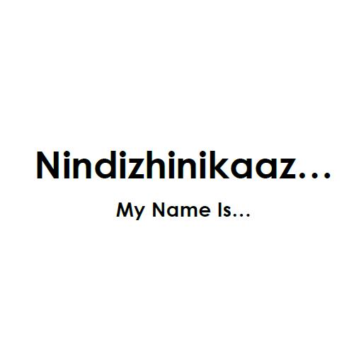 Nindizhinikaaz... Mazina_igan