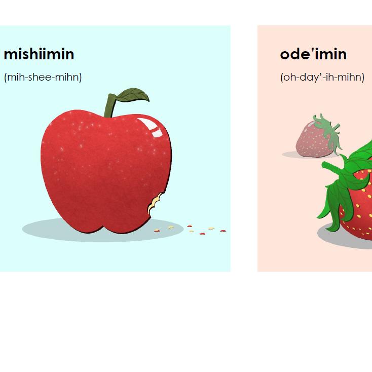 Miijim Wiisiniwin - Cards