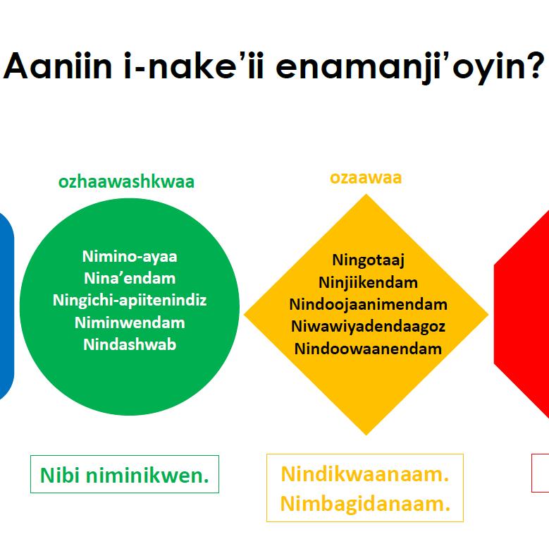 Zones of Regulation Posters - Anishinaabemowin & English