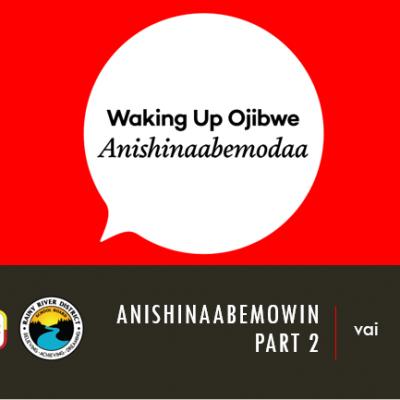 Anishinaabemowin Part 2