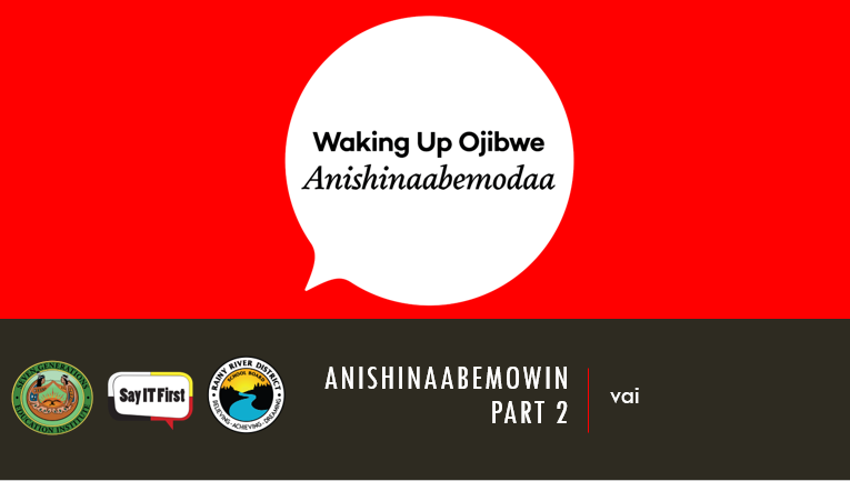 Power Point Presentation - Anishinaabemowin Part 2: vai