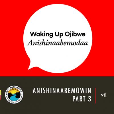 Anishinaabemowin Part 3