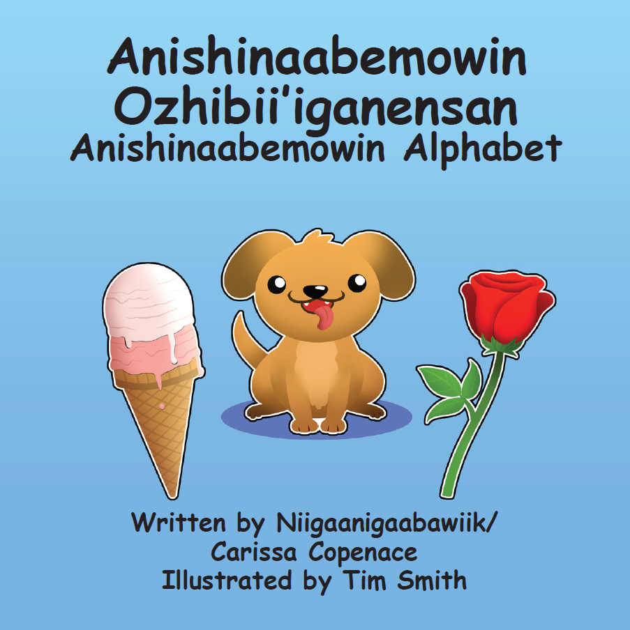 Anishinaabemowin Ozhibii'iganensan - Book