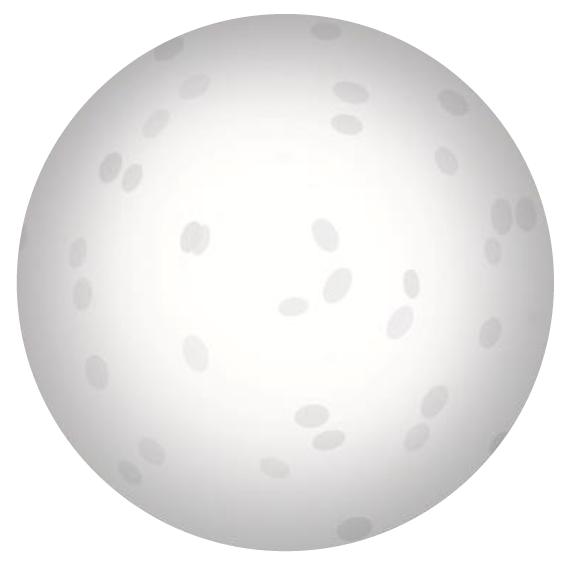 Dibiki-giizis - Full Moon Large Printable
