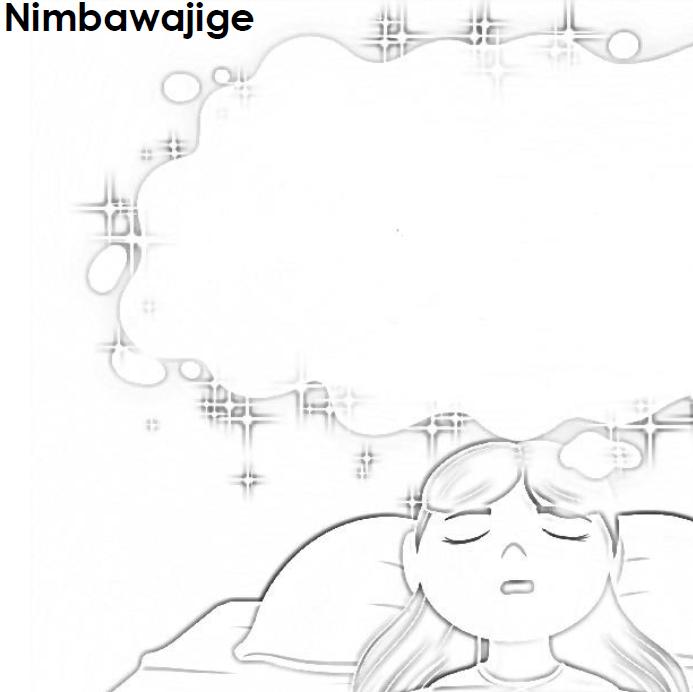 Nimbawajige - Dreaming Journal