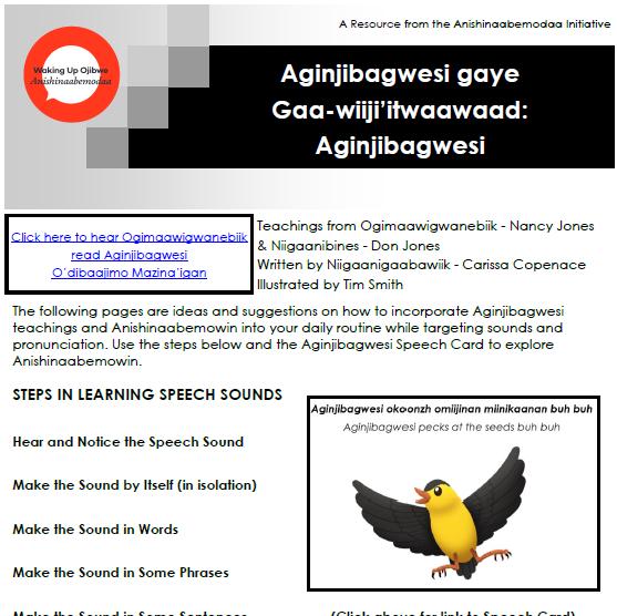 Aginjibagwesi Resource Guide
